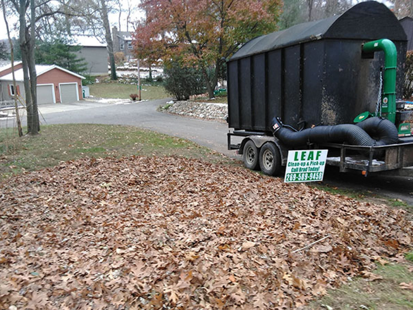 Leaf Cleanup Made Easy